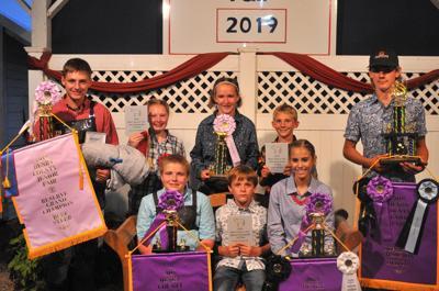 Beef steer awards