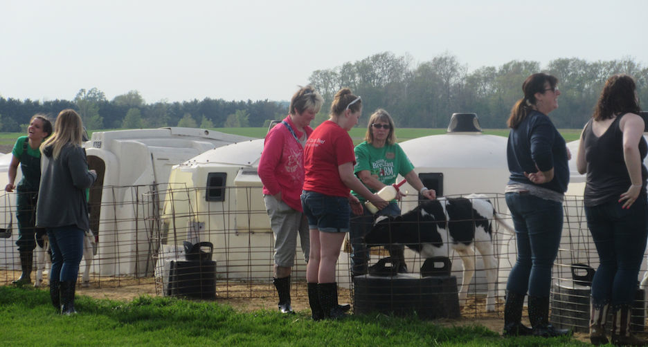 Carousel - breakfast on farm
