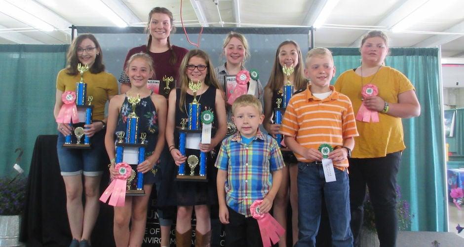 Carousel - Paulding Fair winners 6-14-19