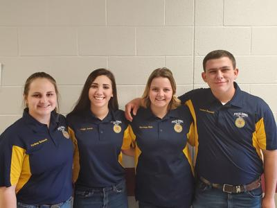 Paulding FFA team places first