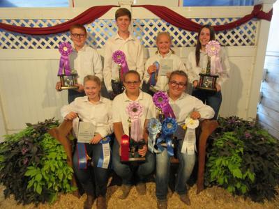 Rabbit show winners 2