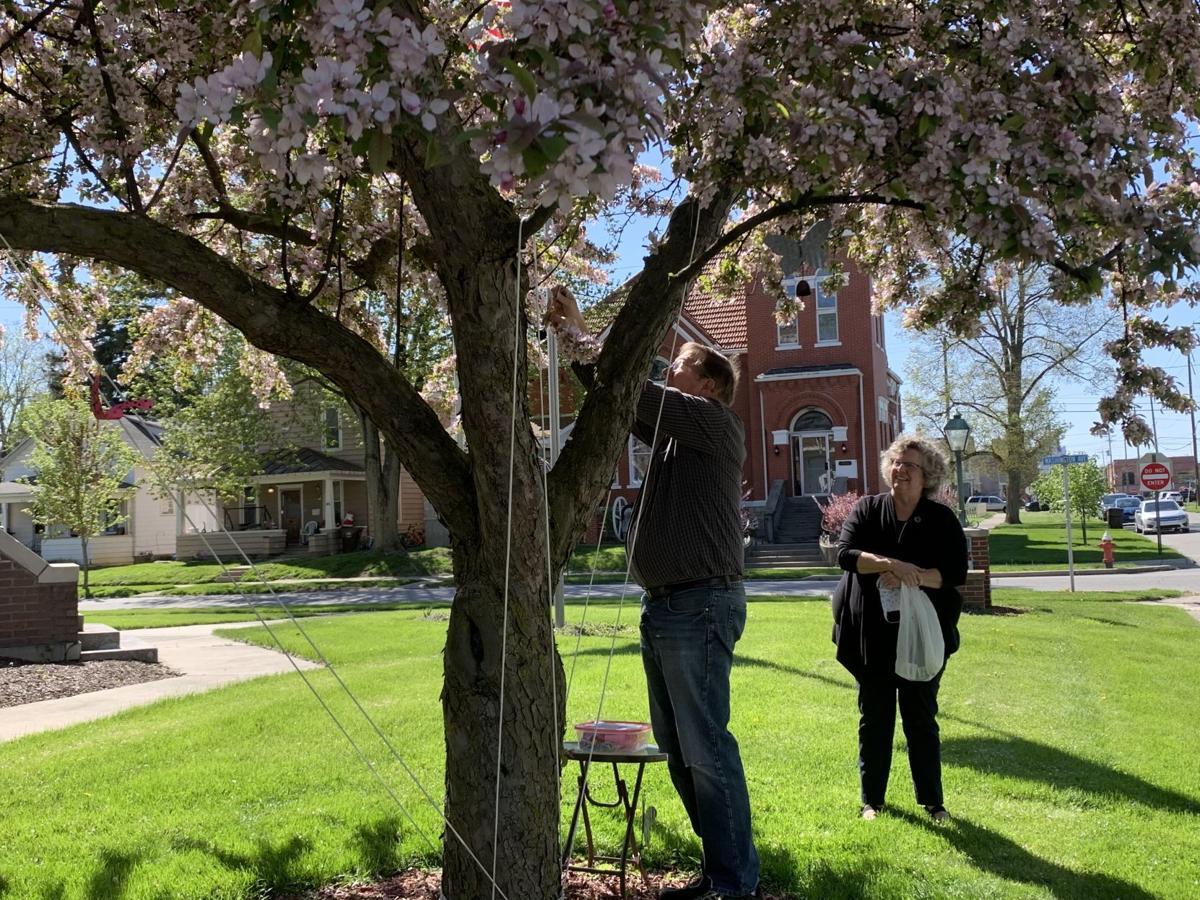 First Presbyterian prayer tree 1
