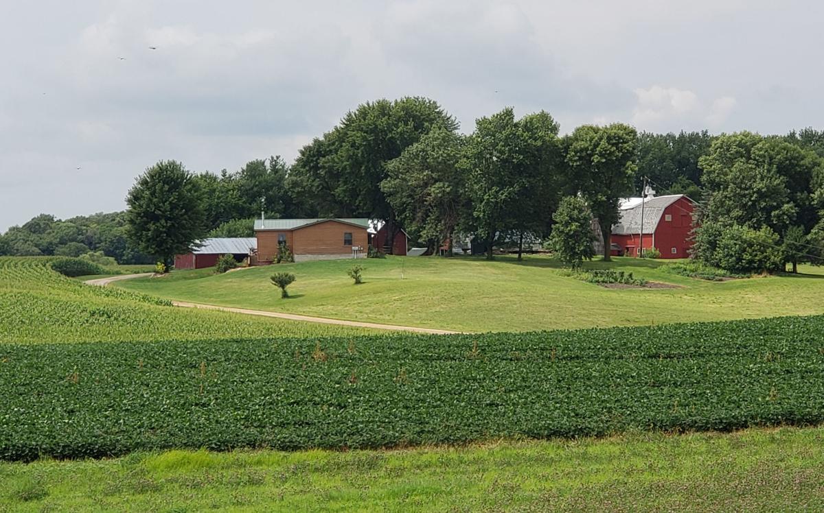 Pesina farm