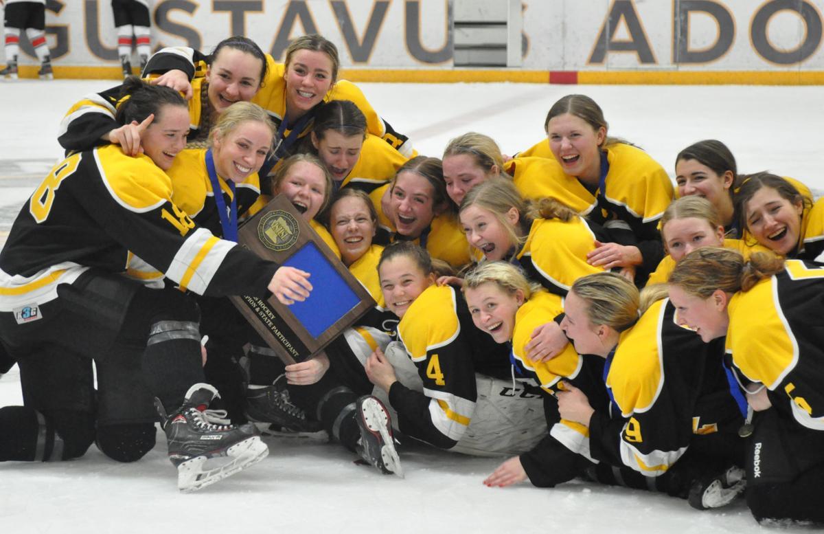Girls hockey section trophy