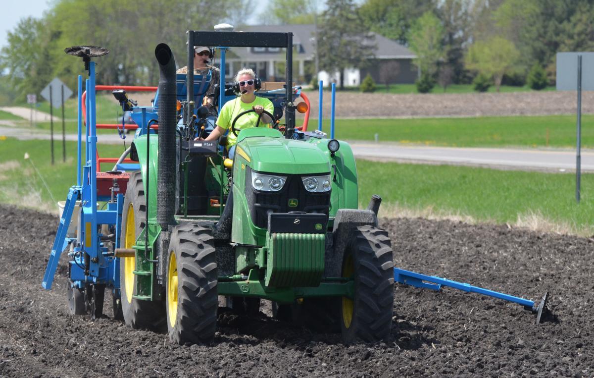 Planting on the FFA plot