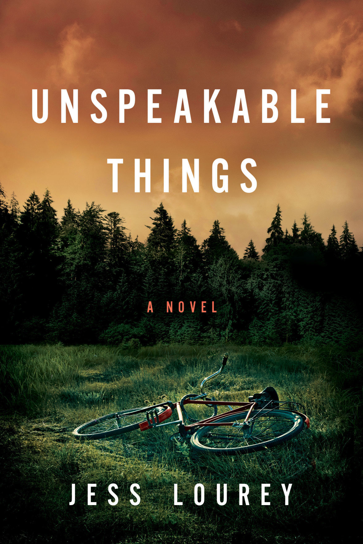 Unspeakable Things book cover