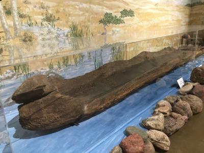 McLeod County canoe
