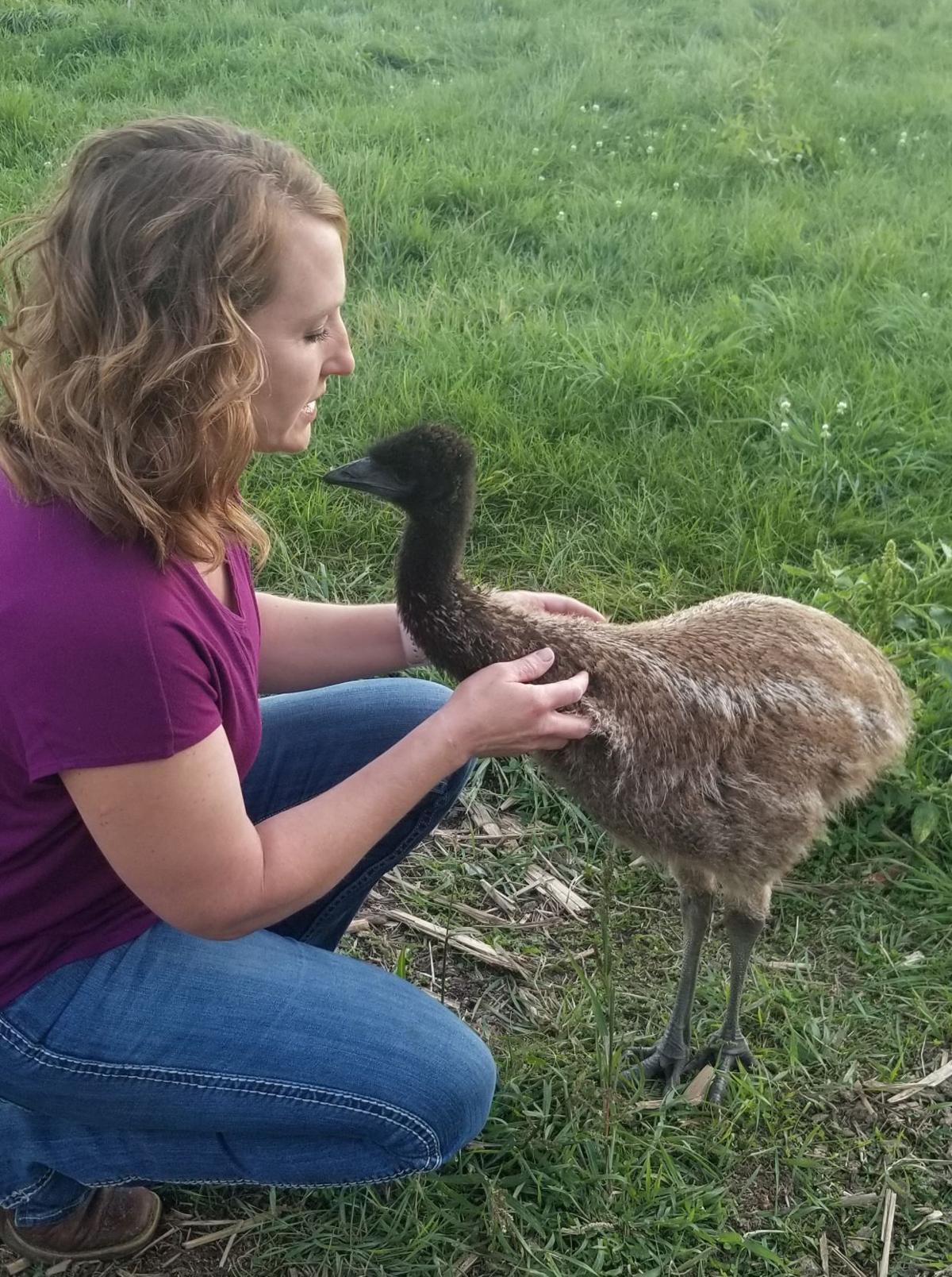 Trudy Lickfelt with emu