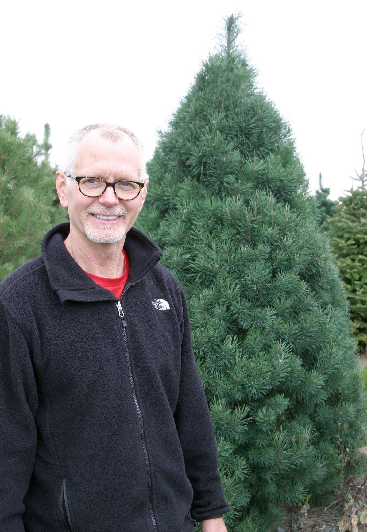 Krueger with tree - vertical