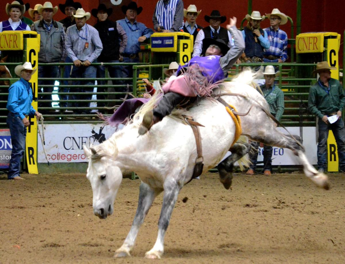 Ride Em Cowboy Berghuis Wins National Championship After
