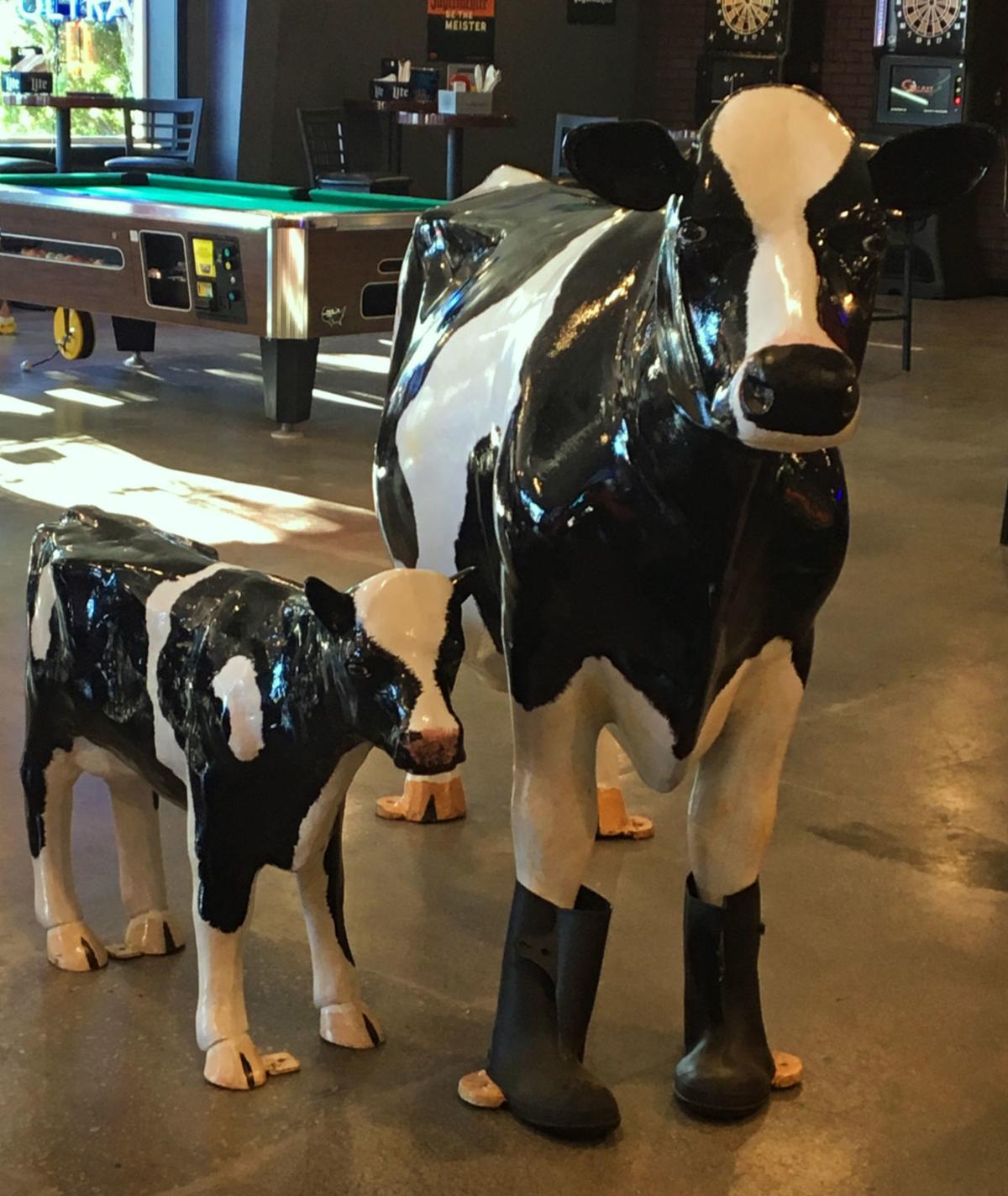 Interior cows