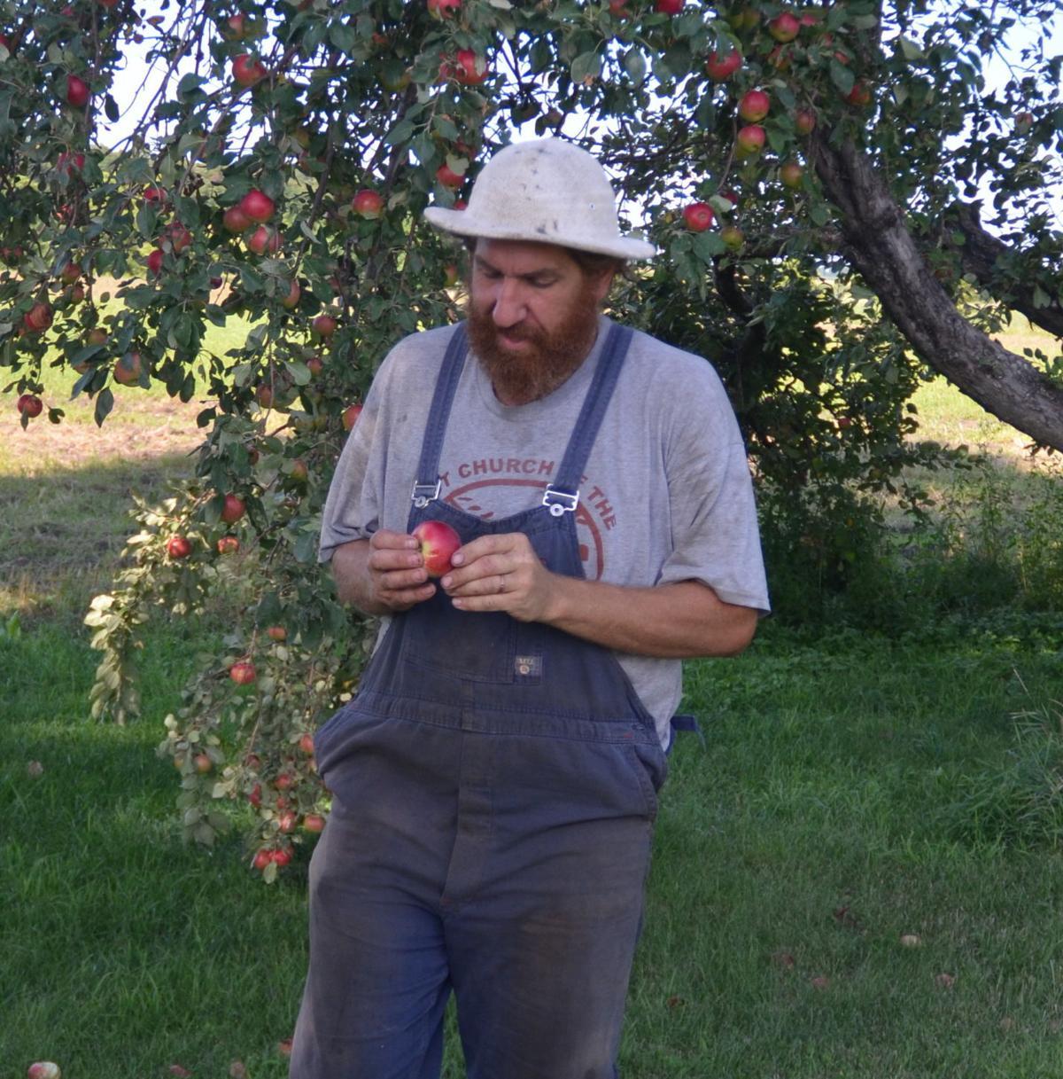 Daniel's apple