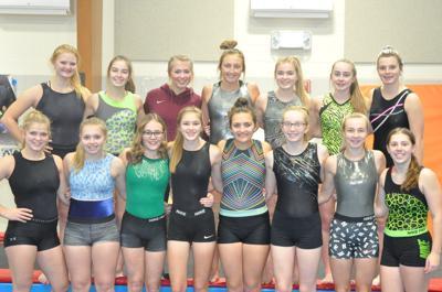 2019-20 gymnastics team photo