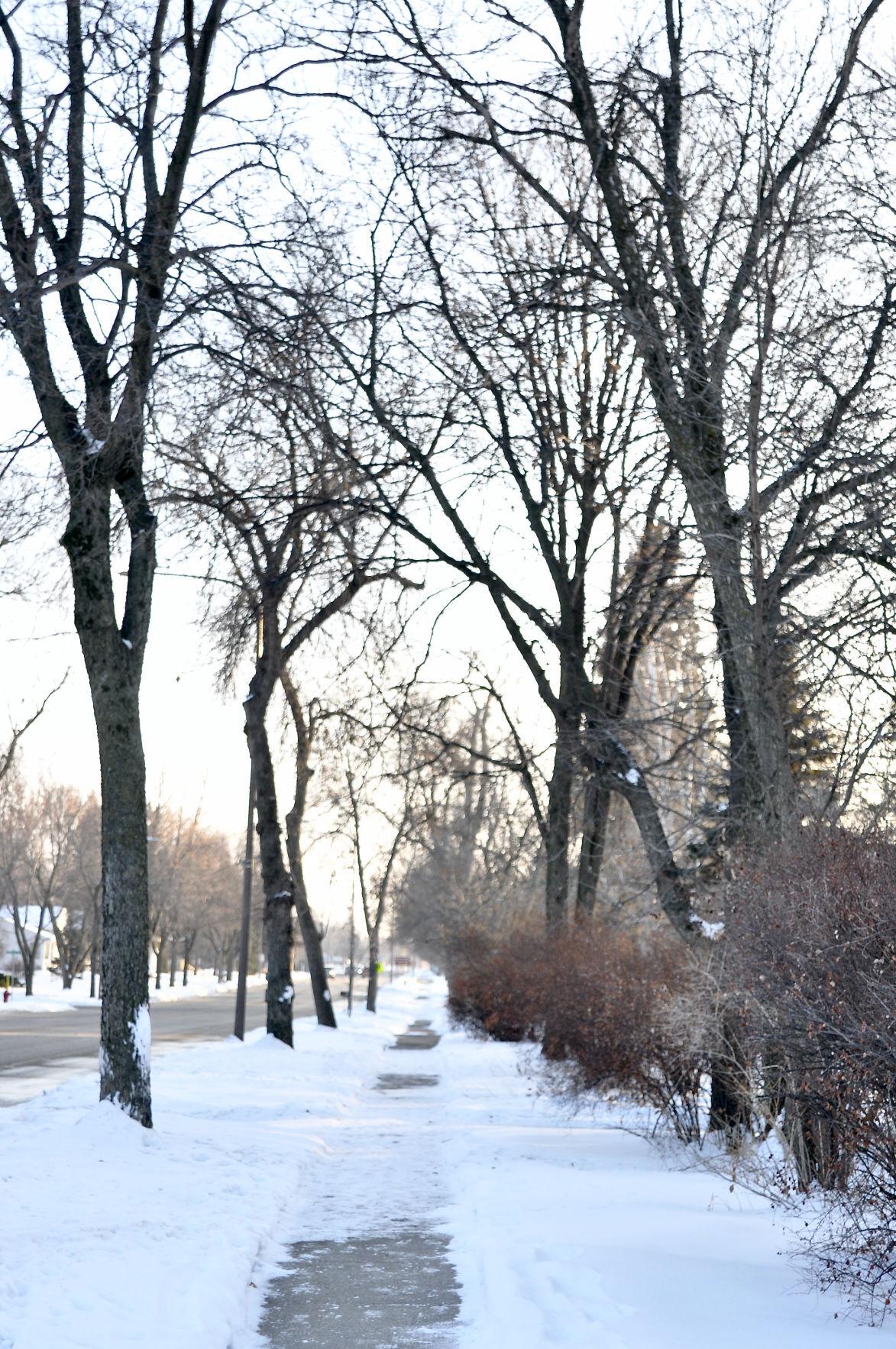 Sibley Avenue trail grant application
