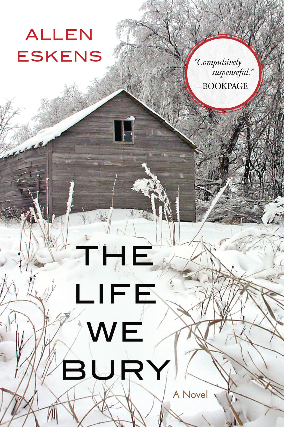 The Life We Bury book cover