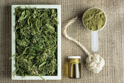 cannabis, hemp, mariuana