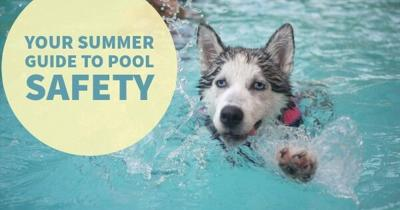 Your Summer Guide to Pool Safety