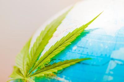 Cannabis,Therapy.,Globe,Marijuana,Plant,Hemp,Leaf, eco