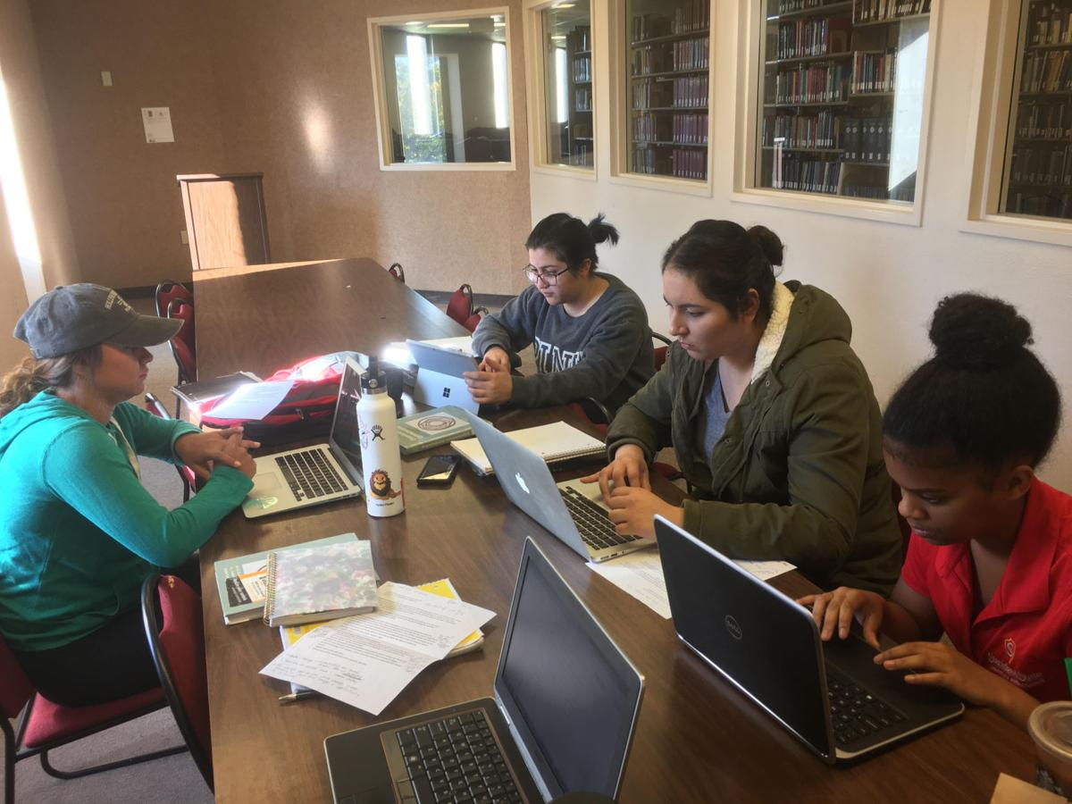 Students work in a library work study room