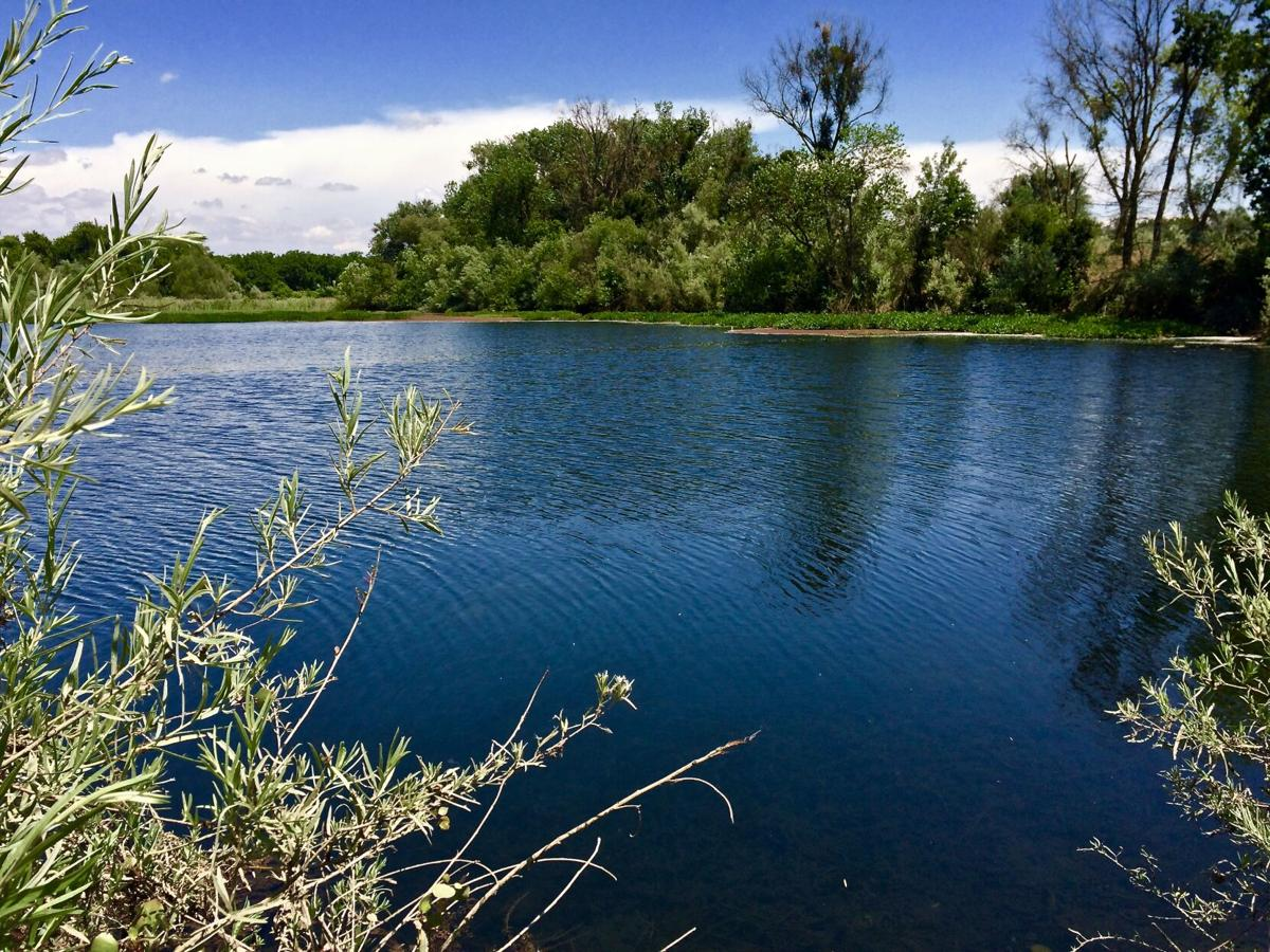 Escape The Heat This Summer: Tips on River Floating