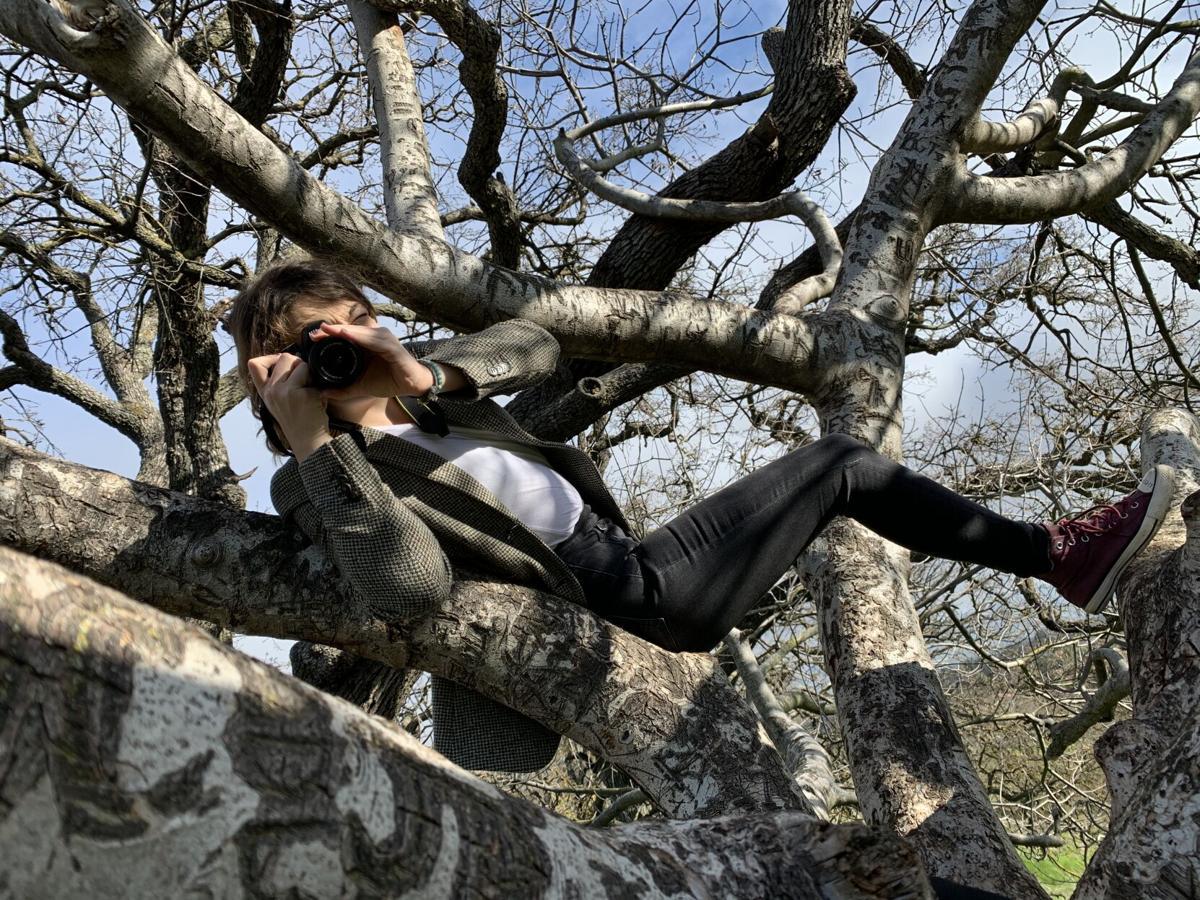 A Maya in a Tree