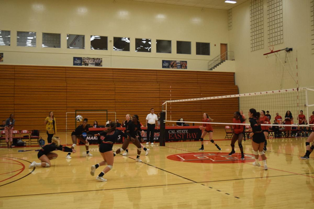 volleyball at east bay cover photo