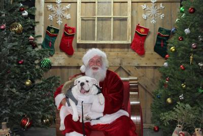 Santa and pup