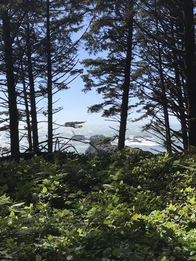 Nesika Beach Preserve