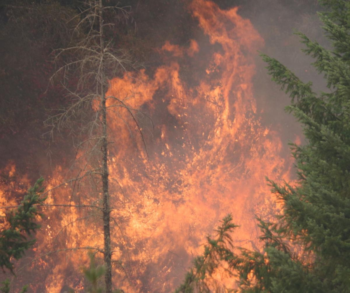 Mile Post 97 Wildfire