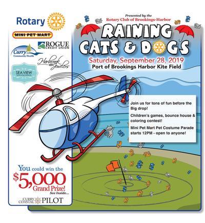 2019 Raining Cats & Dogs