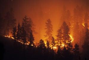 Oregon's Wildfires