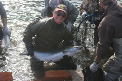 Cradling Salmon