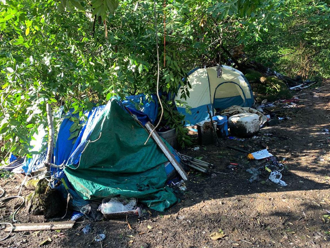 Tent, Tarps