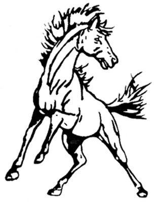 S-E-M Mustangs