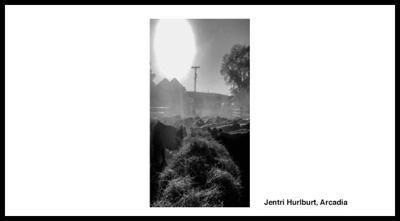 Jentri Hurlburt Arcadia Senator Sasse photography contest 2020