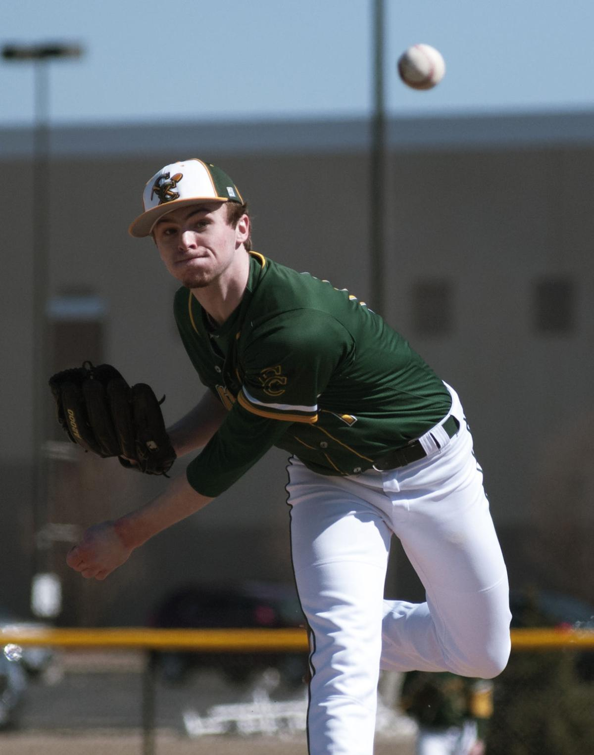 BASEBALL: Coal City's Payton Hutchings named Daily Journal Co-Player of the Year