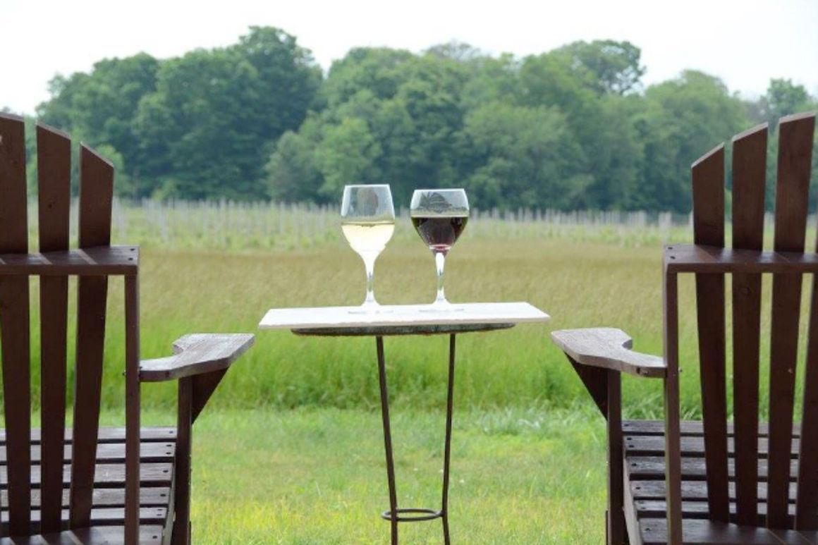 Cogdal Vineyards