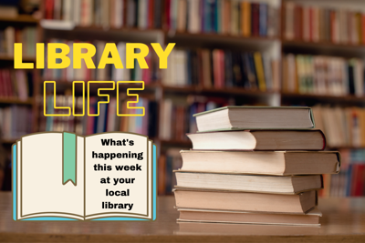 Library Life - image 4