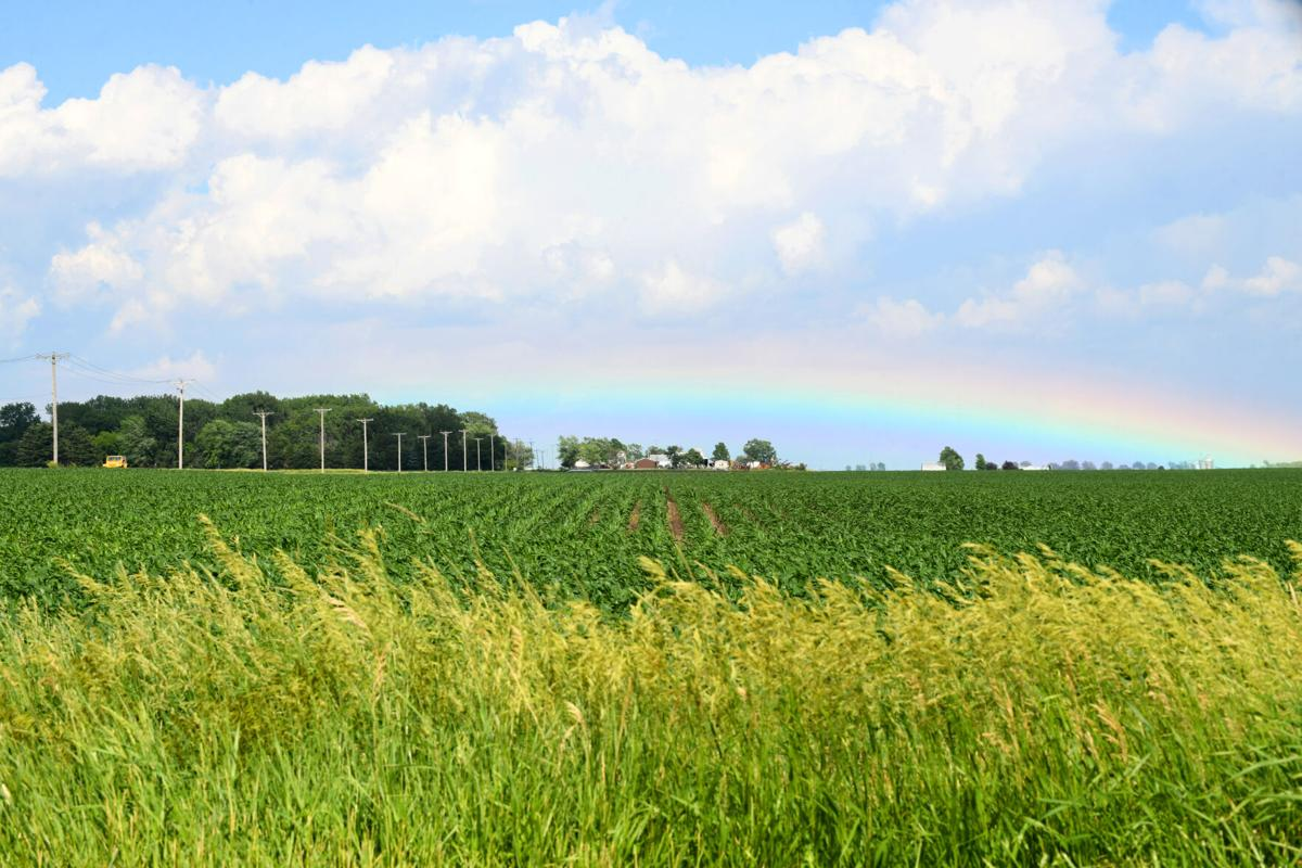 Rainbows on the prairie