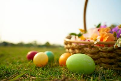 Easter eggs in the lawn with flowers