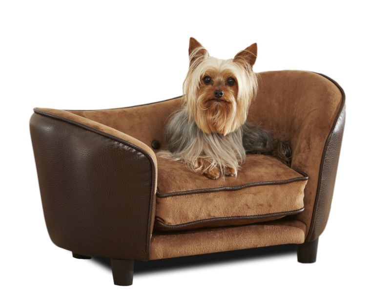 How To Choose Pet Friendly Furniture