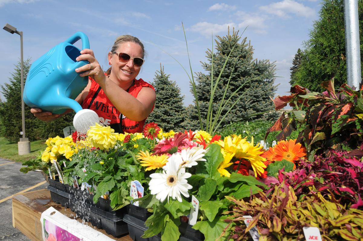 Manteno Farmers Market Doubles For 16 Local News