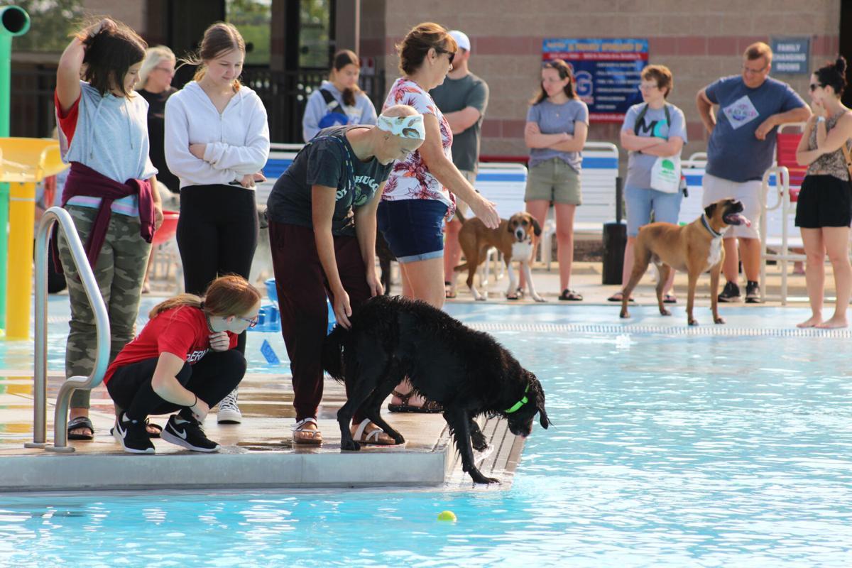 Splash Valley Pup Pool Pawtie