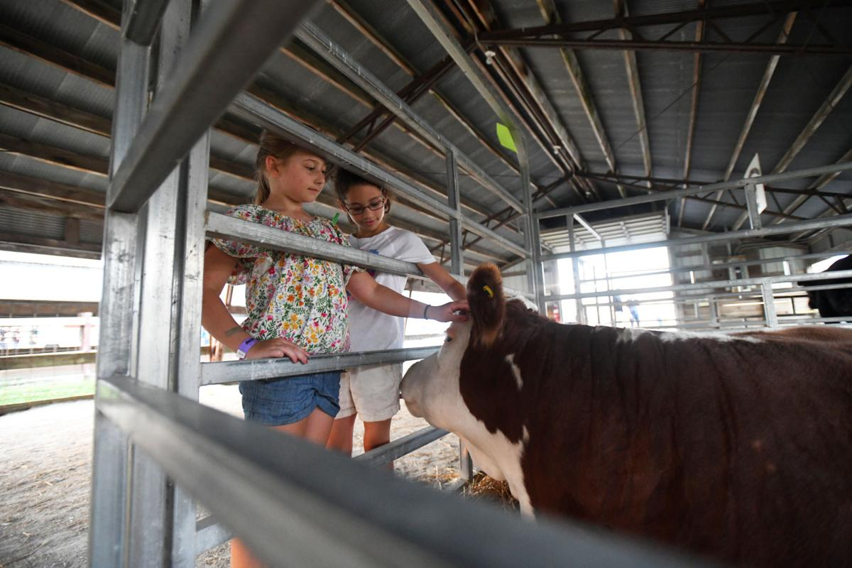 2019 Kankakee County Fair