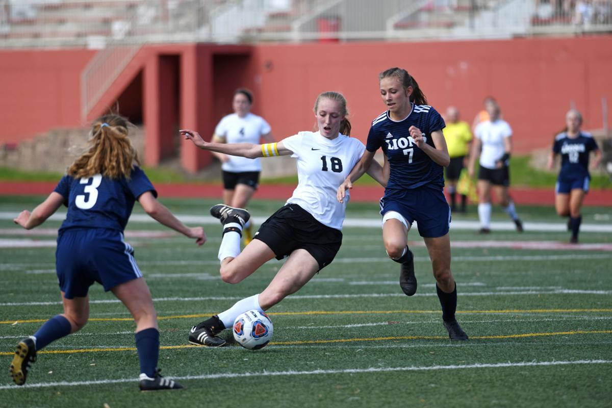 Girls Soccer: Herscher claims third at Class 1A State Finals