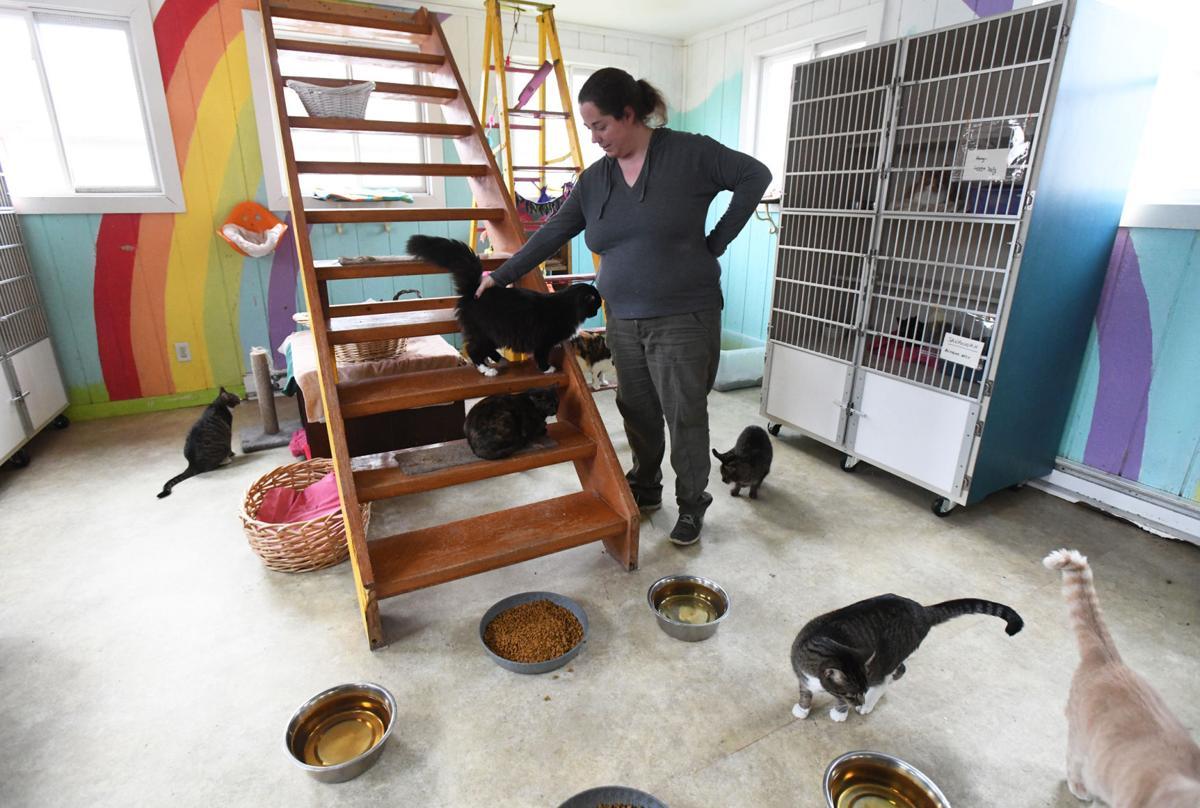 Iroquois County Animal Rescue