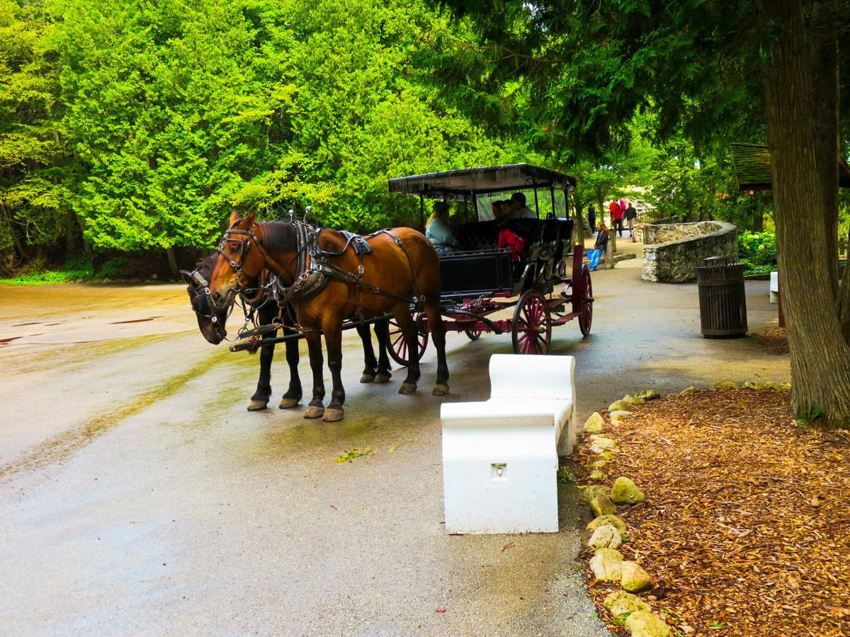A taxi is a carriage pulled by two Clydesdales