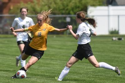 GIRLS SOCCER: Daily Journal All-Area team, Player of the Year announced