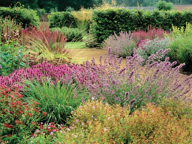 Prairie gardens work in spaces large and small life for Garden plans with grasses