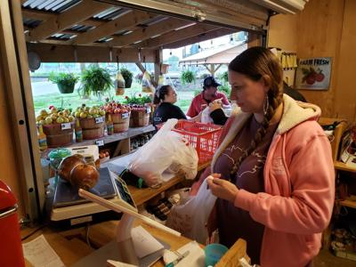 moyock farmers market